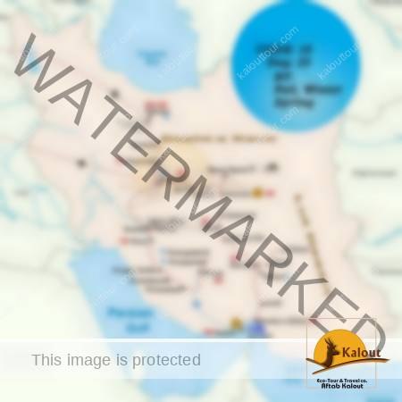 10-Combination-of-Persian-Gulf`s-Islands-Massive-Lut-Desert