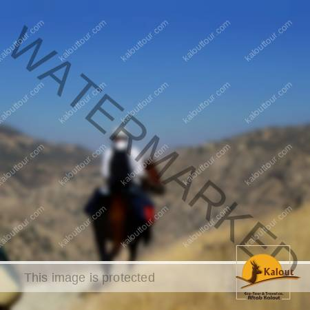 Iran Horseback Riding Tour