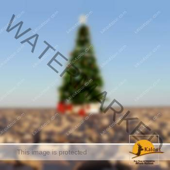 圣诞节旅游