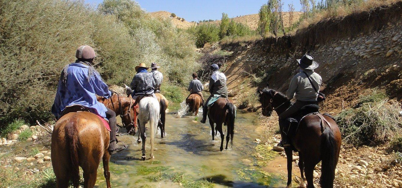 Qashqai Nomad Horseback