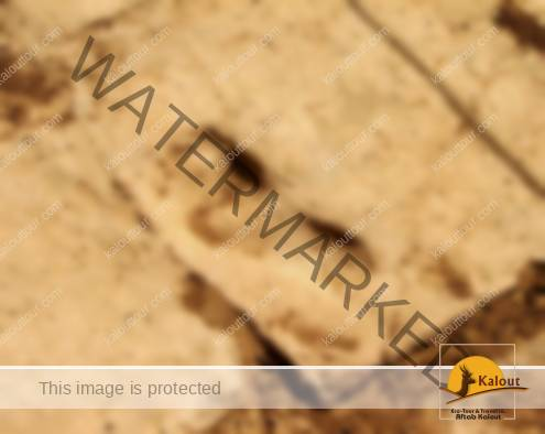 +3000 years old original footprint on the pavements of Tchogha Zanbil Temple