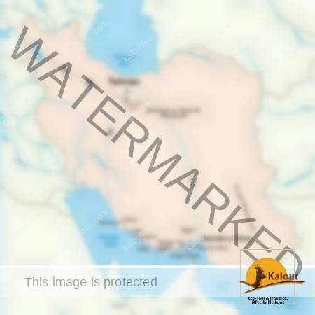 Persian-Gulf-Tour-450x450 Tours d'Iran